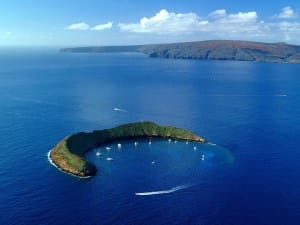 Molokini-Krank-Cycles