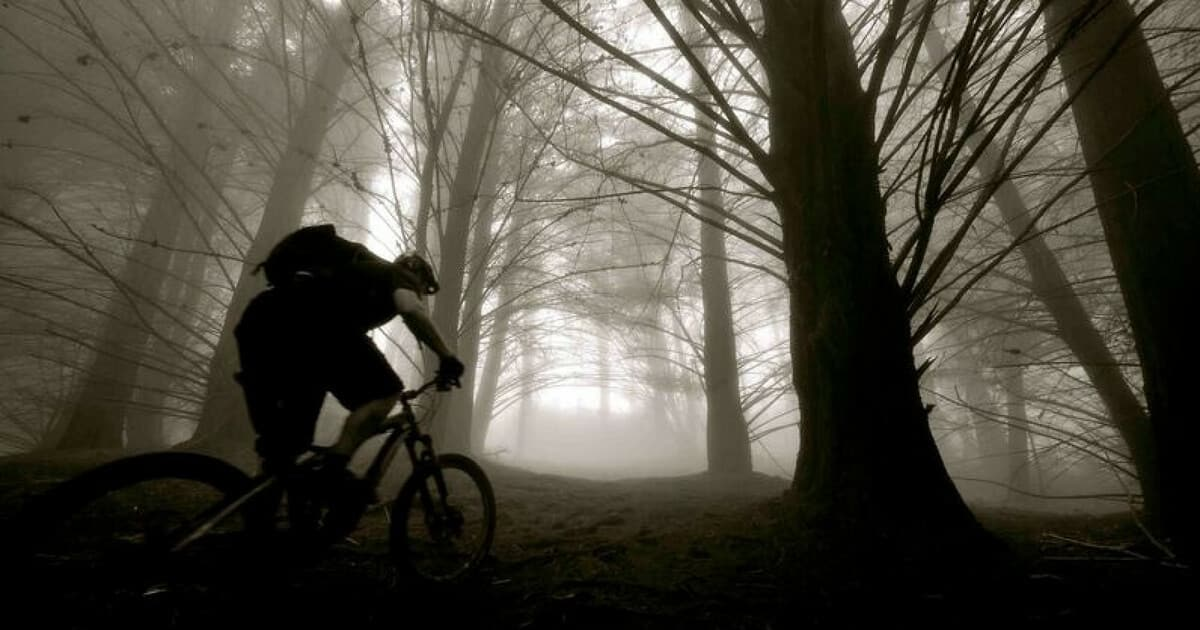 Mobile Bike Repairs Hawaii